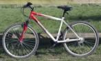 bicycle-1398536732m7w.jpg