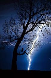 thunderstorm-2353703__480