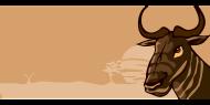 wildebeest-37423__480