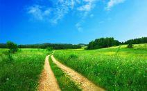 footpath-691021__480