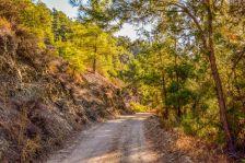 dirt-road-3738386__480