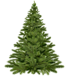 christmas-tree-christmas-1796131__480