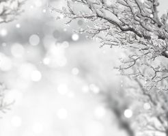 snow-721952__480