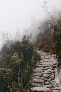 trail-867235__480