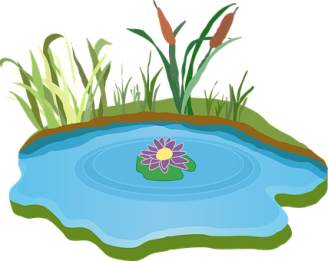 pond-310149__340.png